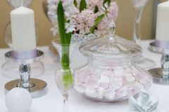 Delicious wedding sweets Royalty Free Stock Photo