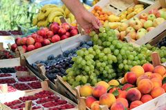 Delicious White and Black Autumn Grape. Buying fresh, ripe, white grapes on the fruit market Stock Photo