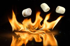 Delicious White Fluffy Roasted Marshmallows in front of a fire. Stock Photography