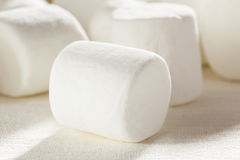 Delicious White Fluffy Round Marshmallows Royalty Free Stock Image