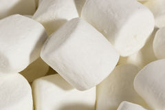 Delicious White Fluffy Round Marshmallows Royalty Free Stock Photography
