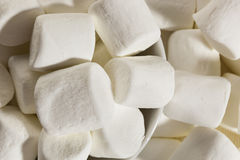 Delicious White Fluffy Round Marshmallows Stock Photography