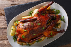 Delicious whole baked duck with apples close-up on a platter. ho stock image