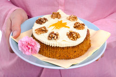Delicious whole carrot cake Royalty Free Stock Image