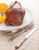 Delicious whole roasted duck Royalty Free Stock Photo