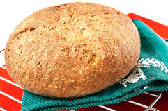 Delicious whole wheat bread on an iron grid Stock Photos