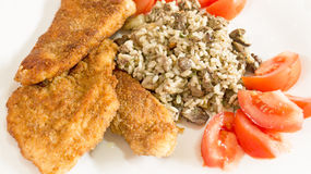 Delicious Wiener Schnitzel with lemon and tomatoes Stock Image