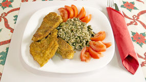 Delicious Wiener Schnitzel with tomatoes Stock Photography