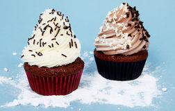 Delicious winter brown and white cupcakes Stock Photos
