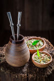 Delicious yerba mate with bombilla and calabash Stock Photography