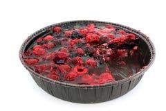 Delicious yogurt cake Stock Images