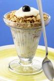 Delicious yogurt and granola Stock Photos