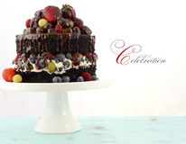 Deliciously divine chocolate cake with berries and cream. Royalty Free Stock Image