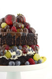 Deliciously divine chocolate cake with berries and cream. Stock Photo