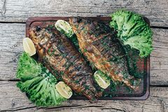 A deliciously roasted carp on a grill, presented on a wooden board, and along the leaves of green salad and pieces of lemon.  royalty free stock images