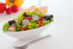 Deliciuos新鲜的沙拉夏天快餐  库存图片