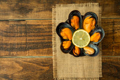 Delicius appetizer with natural mussels. And lemon Royalty Free Stock Image