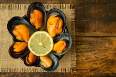 Delicius appetizer with natural mussels. And lemon Stock Image