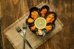 Delicius appetizer with natural mussels. And lemon Royalty Free Stock Photo