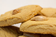 Delicous cookies with nuts. Some delicous cookies with nuts Royalty Free Stock Images