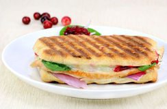 Delicous Panini of fresh turkey. One fresh panini of turkey, spinach, vidalia onion, melted cheese and homemade cranberry sauce Stock Images