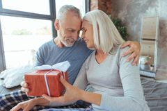 Delighetd aimant les couples âgés tenant un cadeau d'anniversaire Photographie stock