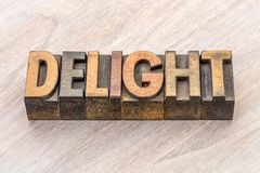 Delight word abstract in wood type Stock Photos