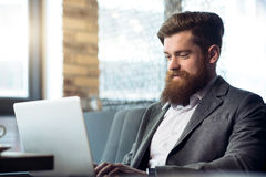 Delighted bearded man working on the laptop. Share positivity. Pleasant cheerful delighted bearded man smiling and using laptop while expressing gladness stock images
