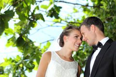 Delighted bride and groom flirting each other Stock Photos