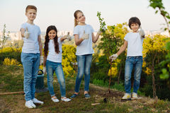 Delighted children standing in one line royalty free stock photography