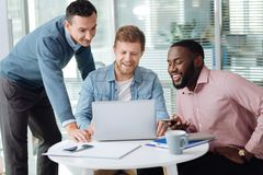 Delighted colleagues having friendly talk. Be positive. Attractive bearded men having joyful mood, looking at computer while sitting between his coworkers Royalty Free Stock Photography