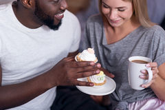 Delighted couple eating cupcakes together Stock Image