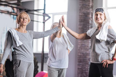 Delighted elderly women giving high five. We are the best. Delighted sporty elderly women standing in a circle and giving each other a high five while resting stock images