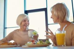 Delighted envelheceu as mulheres que encontram-se para o almoço Foto de Stock