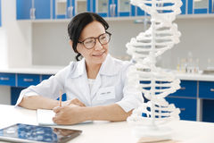 Delighted genetic researcher studying genome. Modern genetics. Delighted intelligent genetic researcher looking at the DNA model and taking notes while studying royalty free stock image