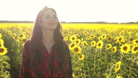 Delighted girl enjoying summer in sunflower field stock footage