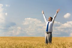 Delighted man. Image of happy businessman enjoying life and freedom in wheat field Stock Photo