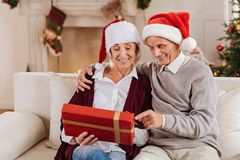 Delighted pensioners spending time with pleasure Stock Photography