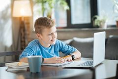 Delighted positive boy enjoying studying. Young genius. Delighted nice positive boy sitting in front of the laptop and doing his home task while enjoying royalty free stock image