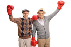 Delighted seniors with boxing gloves. Studio shot of two delighted seniors with boxing gloves posing isolated on white background Royalty Free Stock Photography