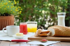 Delightful and Colorful Breakfast in the garden. Delightful and Colorful Breakfast with bread, cheese, strawberry jam along wtih coffee, milk and orange juice in Royalty Free Stock Images