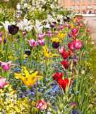 Delightful flower bed in the summer park stock photography