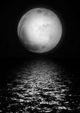 Delightful full silvery moon Stock Photos
