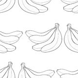 Delightful garden - Bananas background. Background of bunch of bananas on white background in the Delightful garden collection Stock Image