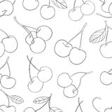 Delightful garden - Seamless pattern cherries 3. Seamless pattern of a lot of cherries on white background in the Delightful garden collection Royalty Free Stock Photography