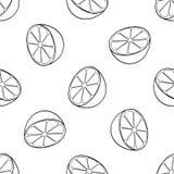Delightful garden - Seamless pattern lemon halves. Seamless pattern of a lot of lemon halves on white background in the Delightful garden collection Stock Photos