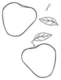 Delightful garden - Triangular construct apple Stock Photos