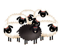 A delightful group of sheep Stock Image