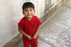 Delightful little boy portrait. Stock Photos