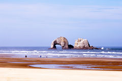 Delightful nice panorama of Pacific coast with sand and lazy wav Stock Images